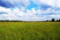 Greenmeadow Farms
