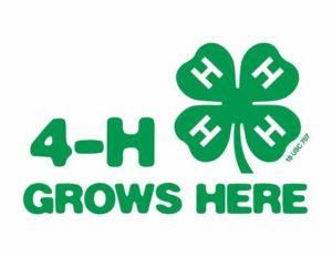 2020 Union County 4H Fair @ Union County 4H Fair Grounds | Liberty | Indiana | United States